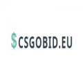 CSGObid.eu