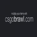 CSGObrawl.com