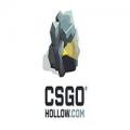 CSGOhollow.com