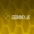 CSGOHONEY.us