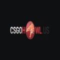 CSGOhowl.us