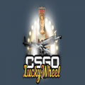 CSGOluckywheel.com