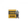 CSGOskins.net