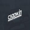 CSGOw.in