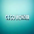 CSGOwonder.com