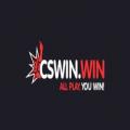 CSwin.win