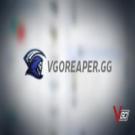 VGOreaper.gg